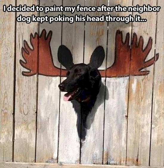 Dog sticking his head through a fence which has been painted to look like a moose head.